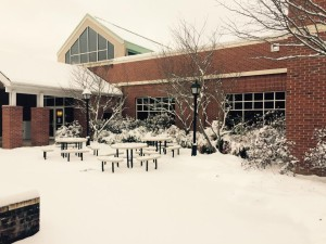 snowy_library
